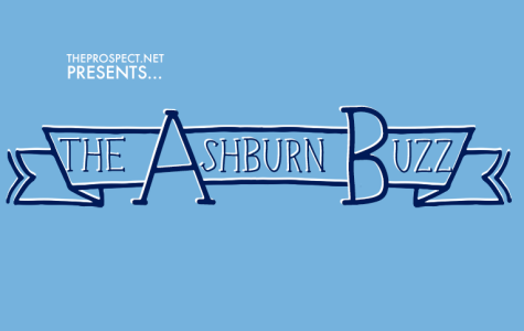 Student Blog 'Buzzes' into Community Spotlight