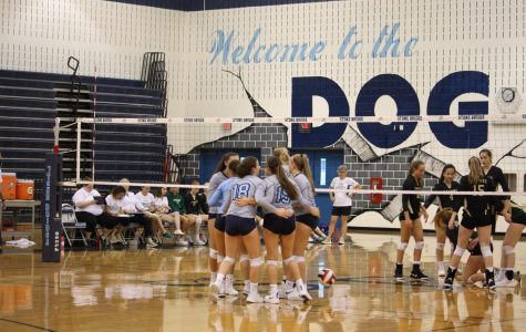 Volleyball Serves Up Competition