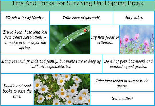 Tips and Tricks for Surviving Until Spring Break