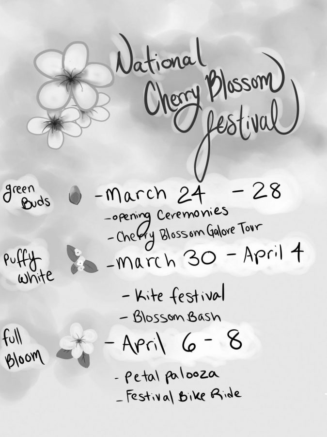Cherry Blossom Festival Hits the Market