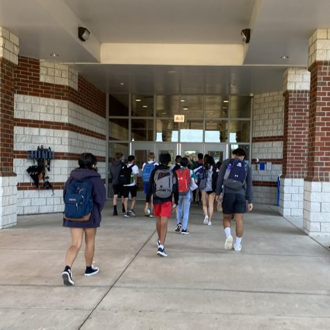 Back at the Dog Pound: Students' Thoughts on Being In-Person